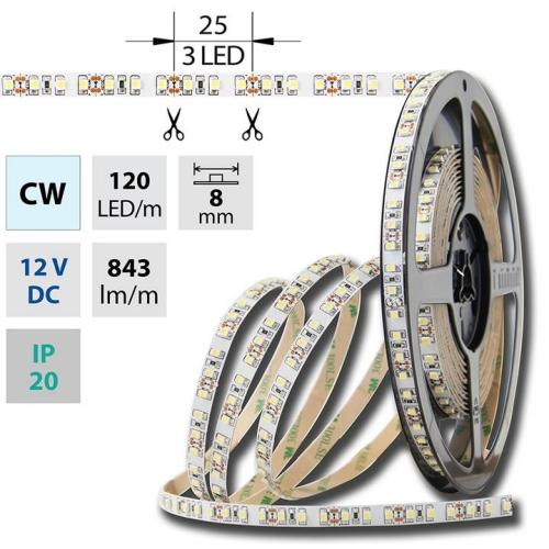 LED pásek McLED SMD3528 studená bílá (6000K) 9,6W/m 12V IP20 8mm 120LED/m ML-121.230.60.2