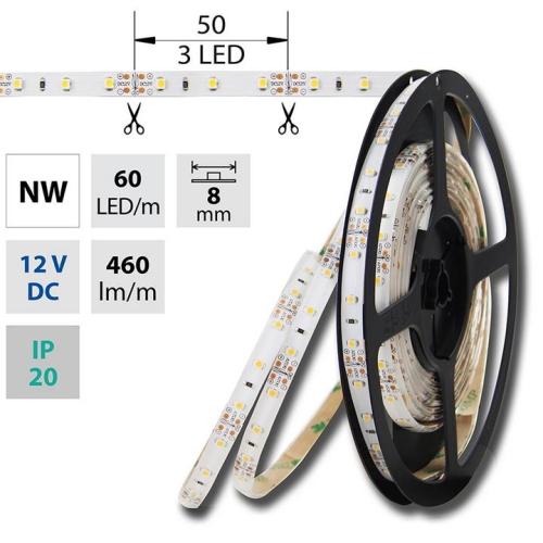 LED pásek McLED SMD3528 4,8W/m 12V IP20 8mm 60LED/m ML-121.773.60.2